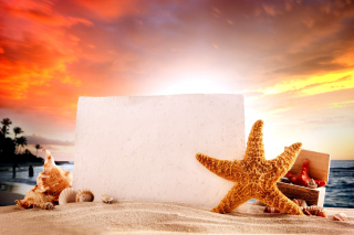 Seashell and Starfish Coastal Decor - Fondos de pantalla gratis para Blackberry RIM Curve 9360