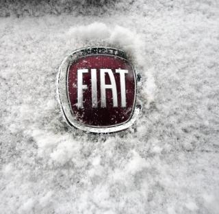 Fiat Car Emblem - Obrázkek zdarma pro 208x208