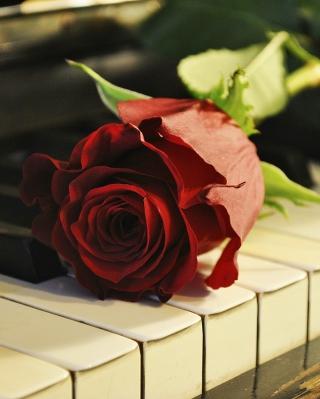 Rose On Piano - Obrázkek zdarma pro 360x400