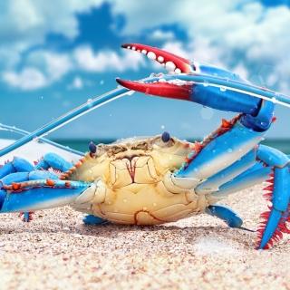 Blue crab - Obrázkek zdarma pro 2048x2048