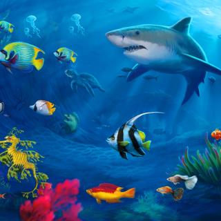 Shark in Perth, Western Australia - Obrázkek zdarma pro iPad Air