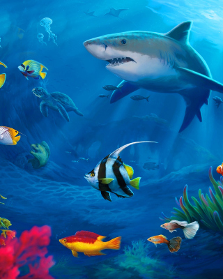Shark in Perth, Western Australia - Obrázkek zdarma pro Nokia Asha 308