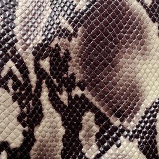 Snake Skin - Obrázkek zdarma pro iPad