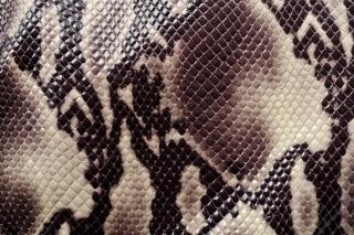 Snake Skin - Obrázkek zdarma pro Samsung Galaxy A3