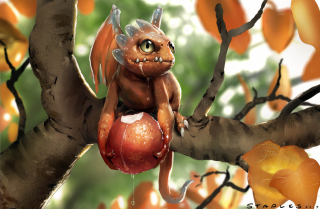 Baby Dragon Picture for Android, iPhone and iPad