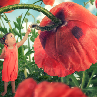 Little kid on poppy flower - Obrázkek zdarma pro iPad mini