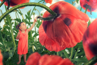 Little kid on poppy flower - Obrázkek zdarma pro HTC Hero