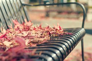 Macro autumn bench - Obrázkek zdarma pro Android 600x1024