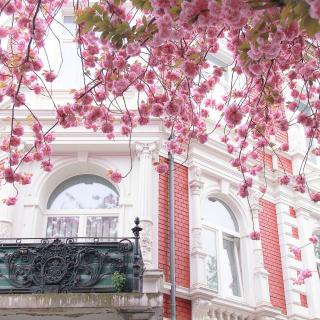 Spring Paris - Obrázkek zdarma pro 320x320