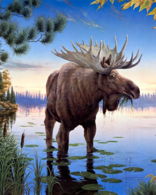 Elk - Obrázkek zdarma pro iPhone 5S