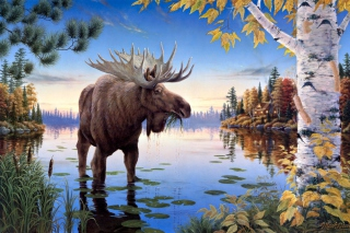 Elk Wallpaper for Android, iPhone and iPad