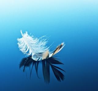 Feather On Blue Surface - Obrázkek zdarma pro 128x128