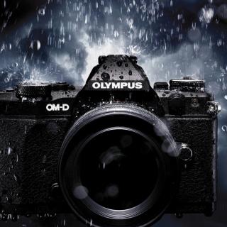 Olympus Om D - Obrázkek zdarma pro iPad mini
