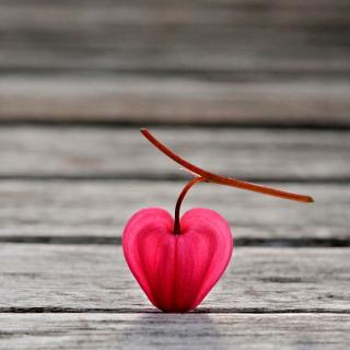 Natural Heart - Obrázkek zdarma pro iPad