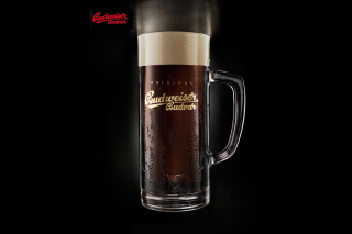 Budweiser Original Picture for Android, iPhone and iPad