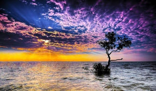 Magnificent Sunset On Sea Wallpaper for Android, iPhone and iPad