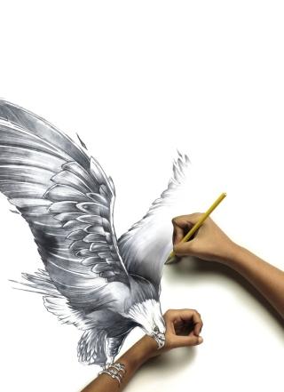 Drawing An Eagle - Obrázkek zdarma pro Nokia X3-02