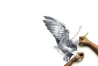Drawing An Eagle Wallpaper for Android, iPhone and iPad