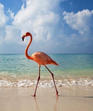 Pink Flamingo - Obrázkek zdarma pro 750x1334