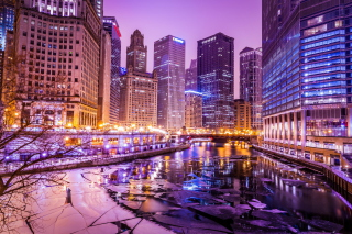 Illinois Chicago Picture for Android, iPhone and iPad