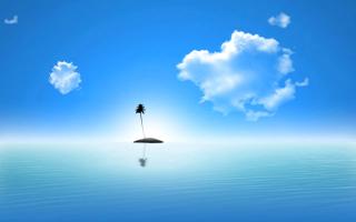 Lonely Palm Tree Island - Obrázkek zdarma pro Android 600x1024
