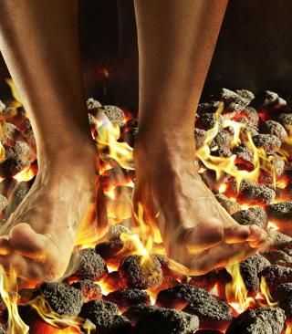 Hot Coals - Obrázkek zdarma pro Nokia Asha 503