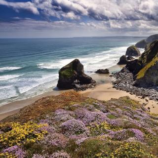 Beach in Cornwall, United Kingdom - Obrázkek zdarma pro 128x128