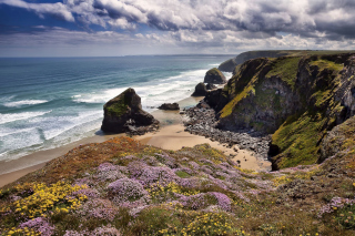 Beach in Cornwall, United Kingdom Picture for Android, iPhone and iPad