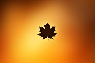 Oak Leaf Wallpaper for Android, iPhone and iPad