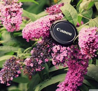 Canon Cap - Obrázkek zdarma pro iPad