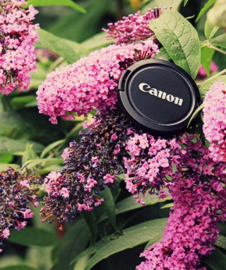 Canon Cap - Obrázkek zdarma pro 240x400