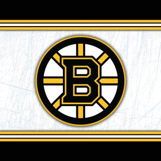 Boston Bruins NHL - Obrázkek zdarma pro 1024x1024