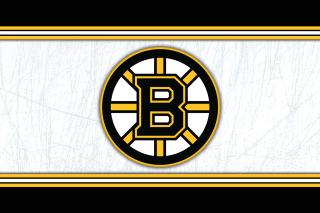 Boston Bruins NHL - Obrázkek zdarma pro Fullscreen Desktop 1280x960