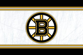 Boston Bruins NHL - Obrázkek zdarma pro LG P970 Optimus