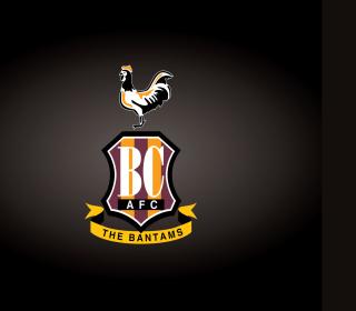 Bradford City A.F.C. - Obrázkek zdarma pro iPad mini