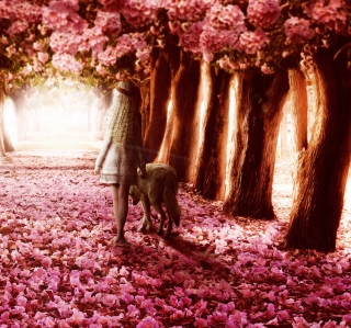 Flower Forest - Obrázkek zdarma pro 208x208