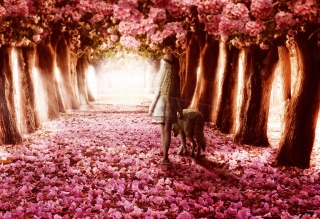 Flower Forest - Obrázkek zdarma pro Widescreen Desktop PC 1680x1050