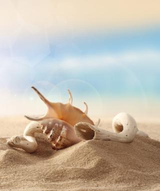 Sea Shells On Sand - Obrázkek zdarma pro 240x400