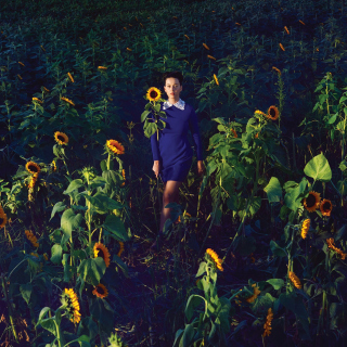 Girl In Blue Dress In Sunflower Field - Obrázkek zdarma pro 208x208