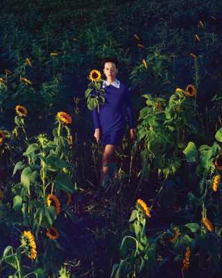 Girl In Blue Dress In Sunflower Field - Obrázkek zdarma pro 240x320