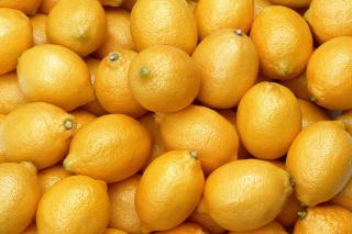 Fresh Yellow Lemons - Obrázkek zdarma pro 1024x768