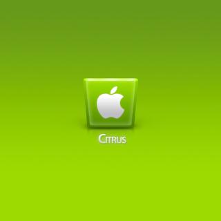 Apple Citrus - Obrázkek zdarma pro iPad