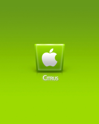 Apple Citrus - Obrázkek zdarma pro Nokia Asha 202