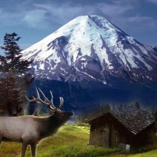 Big Elk - Obrázkek zdarma pro 128x128