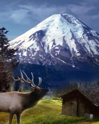Big Elk - Obrázkek zdarma pro 768x1280