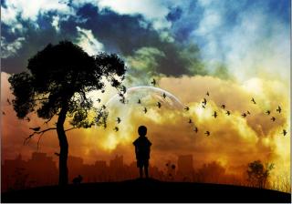 Lonely Boy - Obrázkek zdarma pro 1440x900