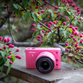 Nikon 1 V3 - Obrázkek zdarma pro iPad mini