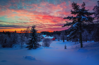 Amazing Winter Sunset Landscape Wallpaper for Android, iPhone and iPad