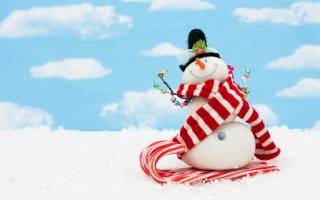 Cool Snowman - Obrázkek zdarma