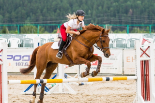 Equestrian Sport Picture for Android, iPhone and iPad